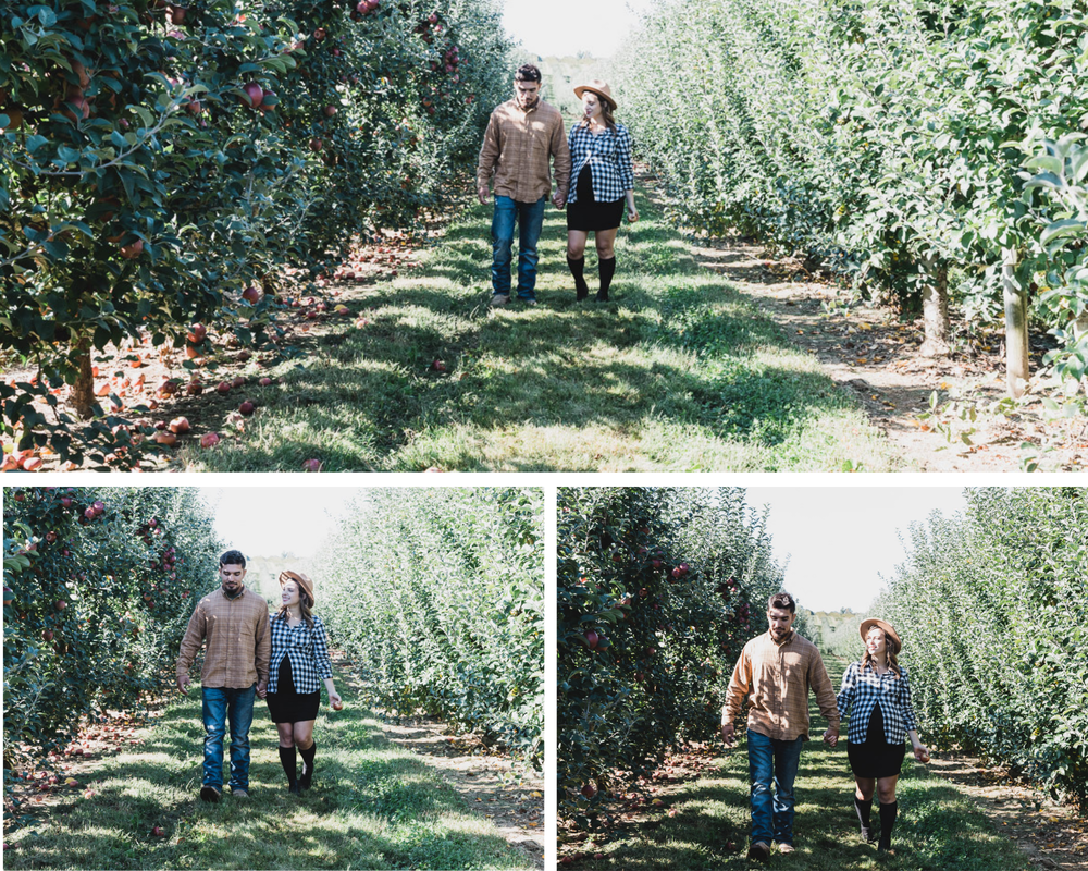 Maternity couple walking in apple orchard