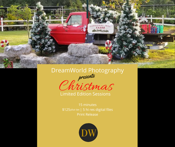Three Seasons Nursery, Palmetto Florida, Christmas red truck backdrop